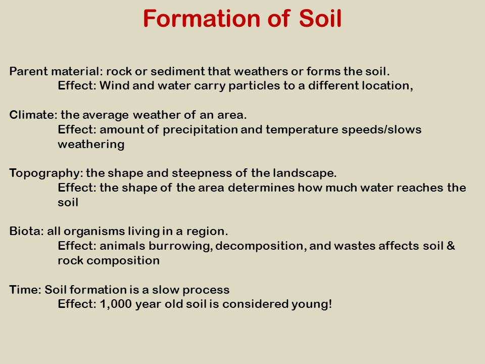 Formation of Soil Parent material: rock or sediment that weathers or forms the soil. Effect: Wind and water carry particles to a different location, C