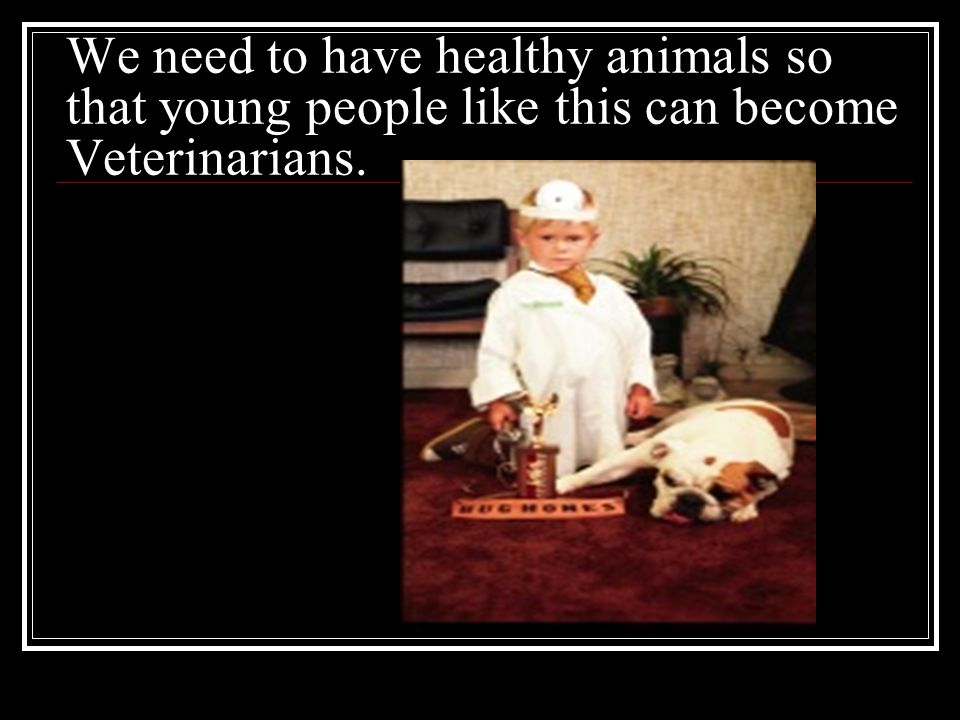 We need to have healthy animals so that young people like this can become Veterinarians.