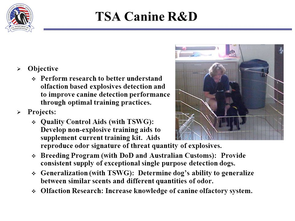 TSA Canine R&D  Objective  Perform research to better understand olfaction based explosives detection and to improve canine detection performance th