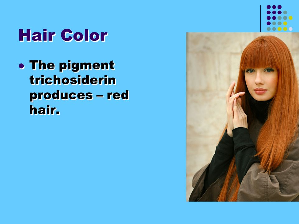 Hair Color If no melanin – hair is white.