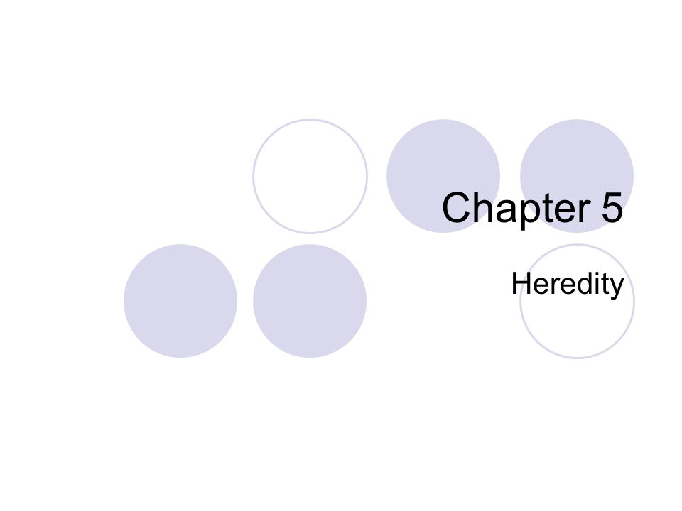 Chapter 5 Heredity
