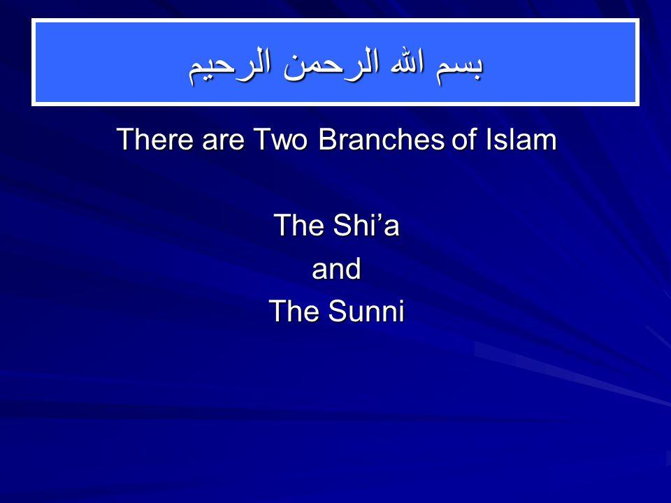 Similarities: Shi'a-Sunni 1.Faith 2. Doctrine 3. Basics of Rituals 4.