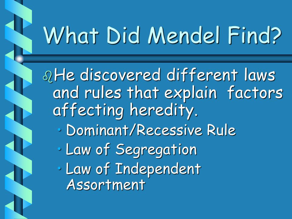 What Did Mendel Find.