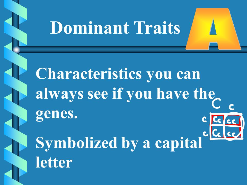 Dominant Traits Characteristics you can always see if you have the genes.