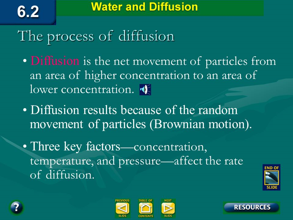 Brownian motion Heat motion of small particles in waterHeat motion of small particles in water