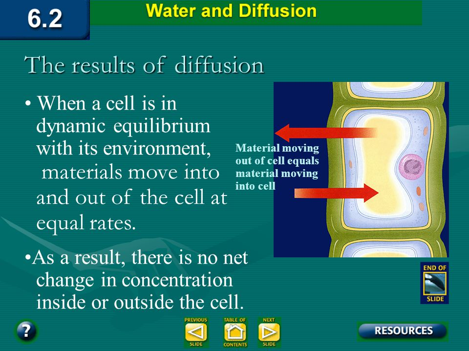 Terms CONCENTRAION of molecules in a fluid is the number of molecules of solute in a given unit of volumeCONCENTRAION of molecules in a fluid is the n