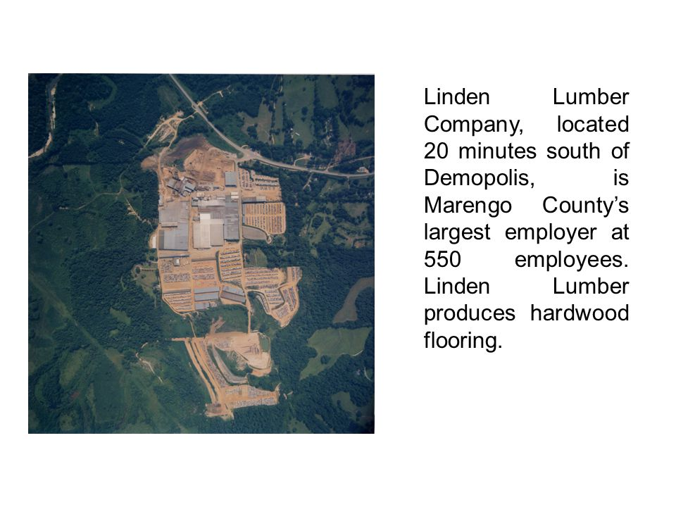 Linden Lumber Company, located 20 minutes south of Demopolis, is Marengo County's largest employer at 550 employees. Linden Lumber produces hardwood f