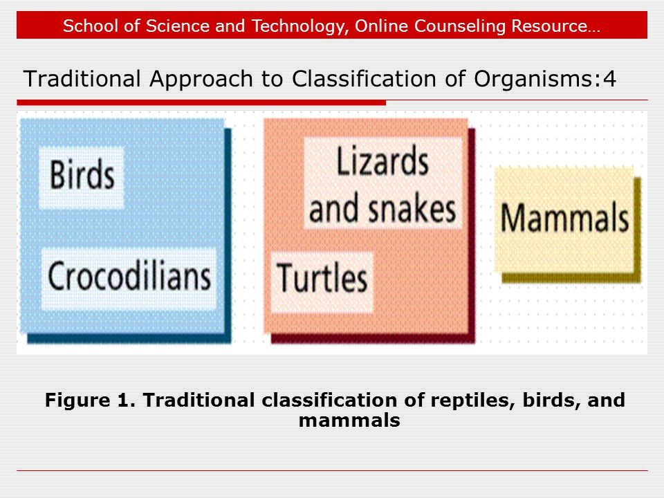 School of Science and Technology, Online Counseling Resource… Traditional Approach to Classification of Organisms:4 Figure 1.