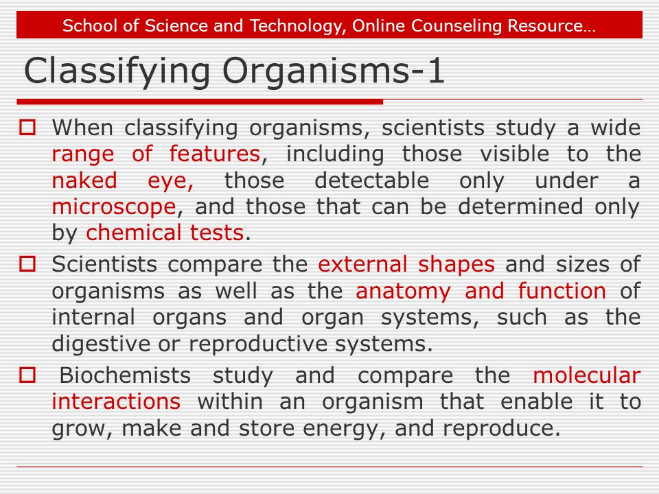 School of Science and Technology, Online Counseling Resource… Classifying Organisms-1  When classifying organisms, scientists study a wide range of features, including those visible to the naked eye, those detectable only under a microscope, and those that can be determined only by chemical tests.