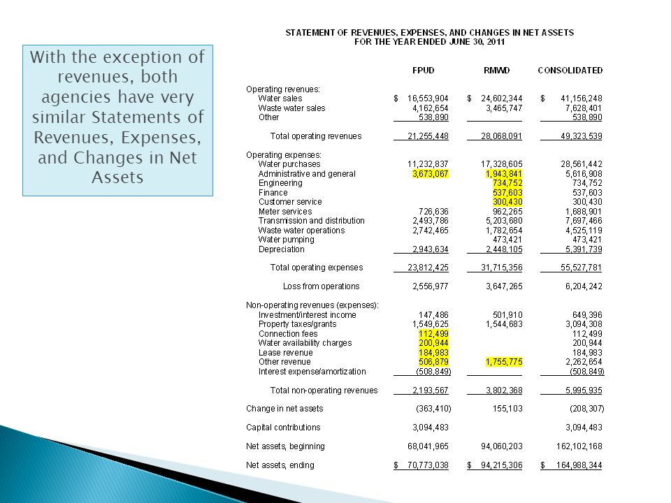 With the exception of revenues, both agencies have very similar Statements of Revenues, Expenses, and Changes in Net Assets