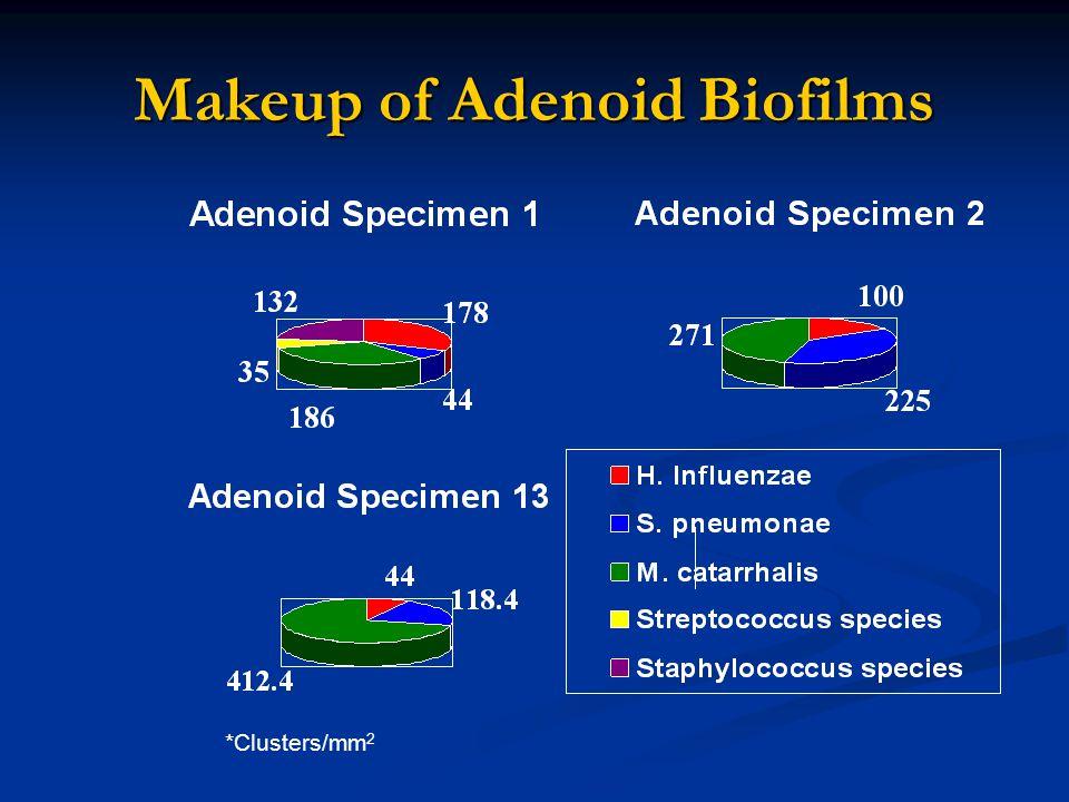 Makeup of Adenoid Biofilms *Clusters/mm 2