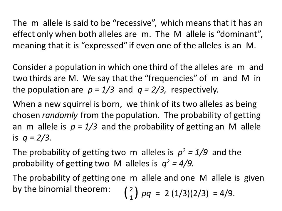 The m allele is said to be recessive , which means that it has an effect only when both alleles are m.