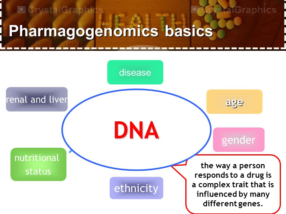 disease age gender renal and liver ethnicity nutritional status the way a person responds to a drug is a complex trait that is influenced by many different genes.