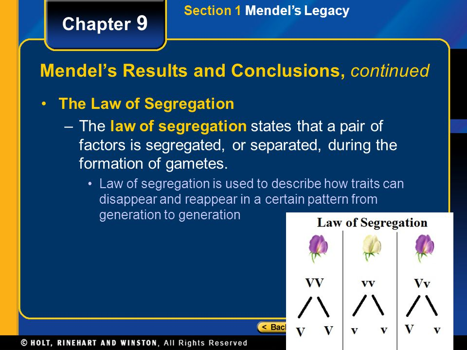 Section 2 Genetic Crosses Chapter 9 Predicting Results of Monohybrid Crosses, continued A testcross, in which an individual of unknown genotype is crossed with a homozygous recessive individual, can be used to determine the genotype of an individual whose phenotype expresses the dominant trait.