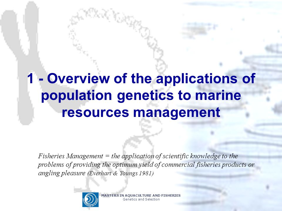 MASTERS IN AQUACULTURE AND FISHERIES Genetics and Selection 1 - Overview of the applications of population genetics to marine resources management Fisheries Management = the application of scientific knowledge to the problems of providing the optimum yield of commercial fisheries products or angling pleasure (Everhart & Youngs 1981)