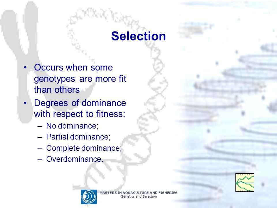 MASTERS IN AQUACULTURE AND FISHERIES Genetics and Selection Selection Occurs when some genotypes are more fit than others Degrees of dominance with respect to fitness: –No dominance; –Partial dominance; –Complete dominance; –Overdominance.