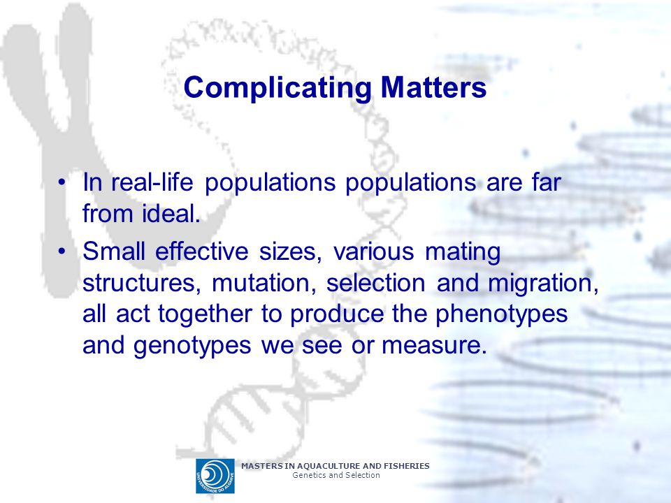 MASTERS IN AQUACULTURE AND FISHERIES Genetics and Selection Complicating Matters In real-life populations populations are far from ideal.