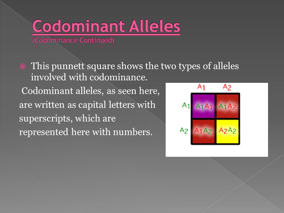 WWhat is codominance.