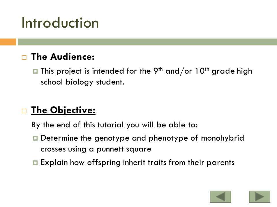 Introduction  The Audience:  This project is intended for the 9 th and/or 10 th grade high school biology student.