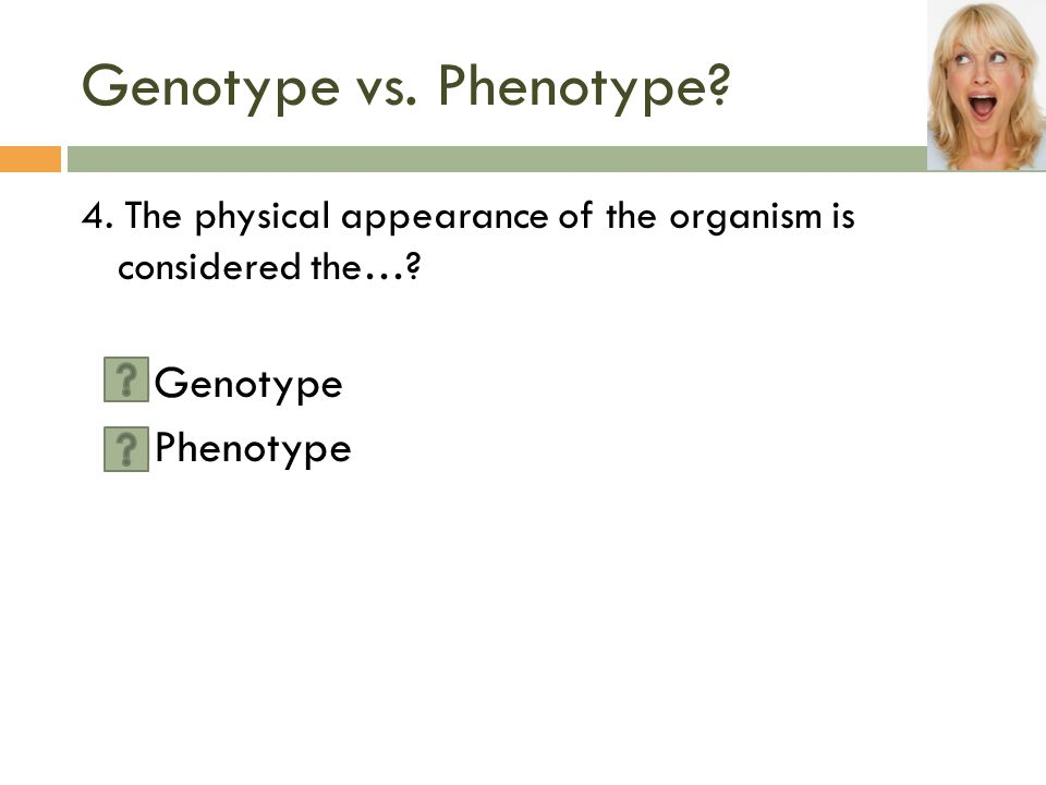 Genotype vs.Phenotype. 4. The physical appearance of the organism is considered the….