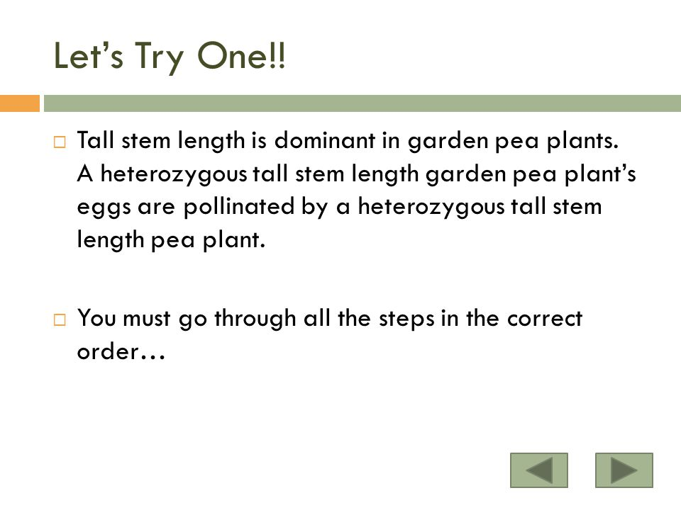 Let's Try One!. Tall stem length is dominant in garden pea plants.