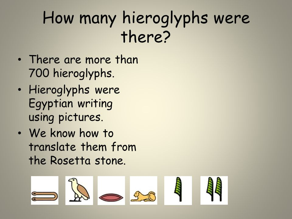 How many hieroglyphs were there. There are more than 700 hieroglyphs.