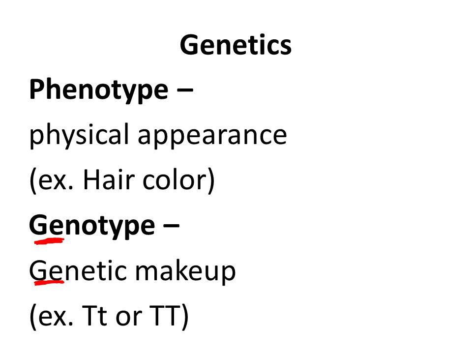 Genetics Phenotype – physical appearance (ex. Hair color) Genotype – Genetic makeup (ex. Tt or TT)