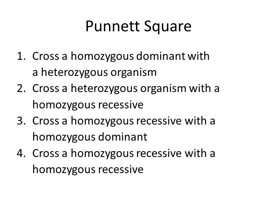 Punnett Square 1.Cross a homozygous dominant with a heterozygous organism 2.Cross a heterozygous organism with a homozygous recessive 3.Cross a homozygous recessive with a homozygous dominant 4.Cross a homozygous recessive with a homozygous recessive