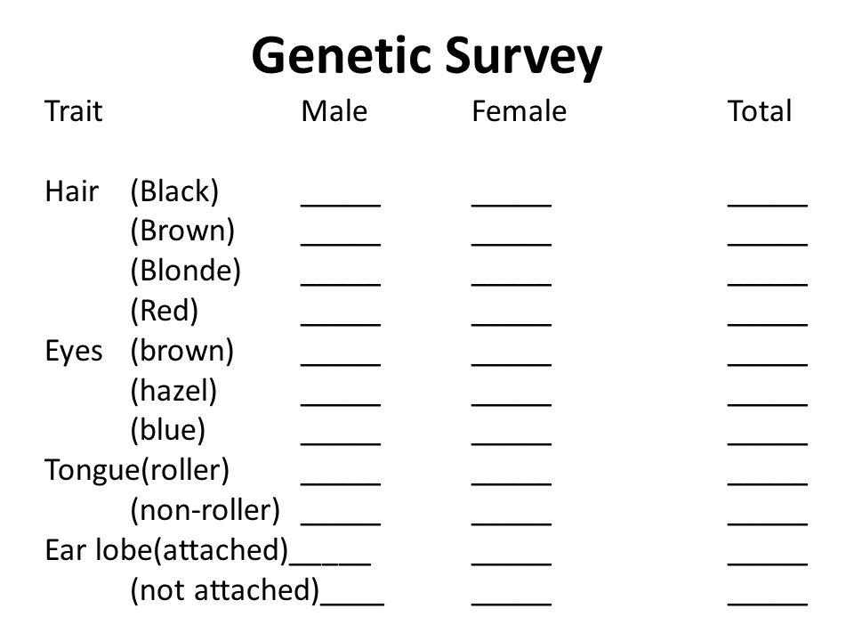 Genetic Survey TraitMaleFemaleTotal Hair(Black)_______________ (Brown)_______________ (Blonde)_______________ (Red)_______________ Eyes(brown)________