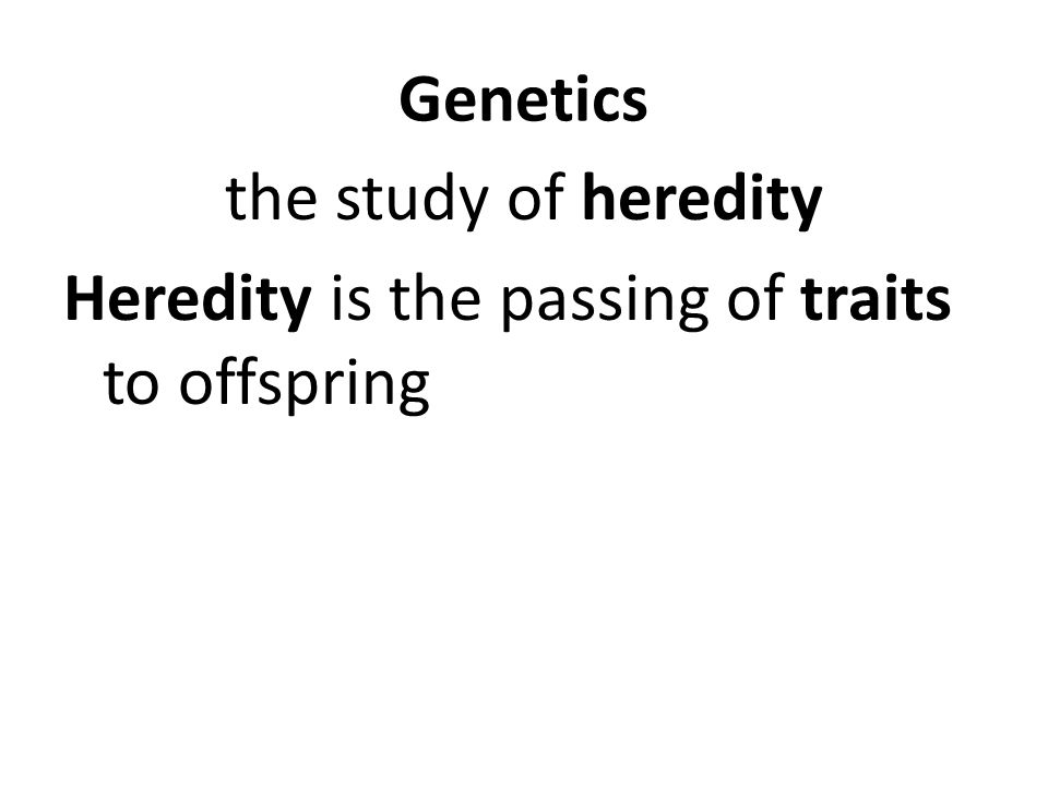 Genetics the study of heredity Heredity is the passing of traits to offspring