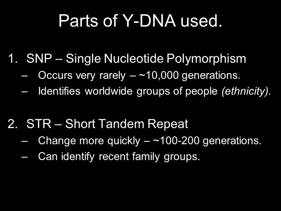 Parts of Y-DNA used.