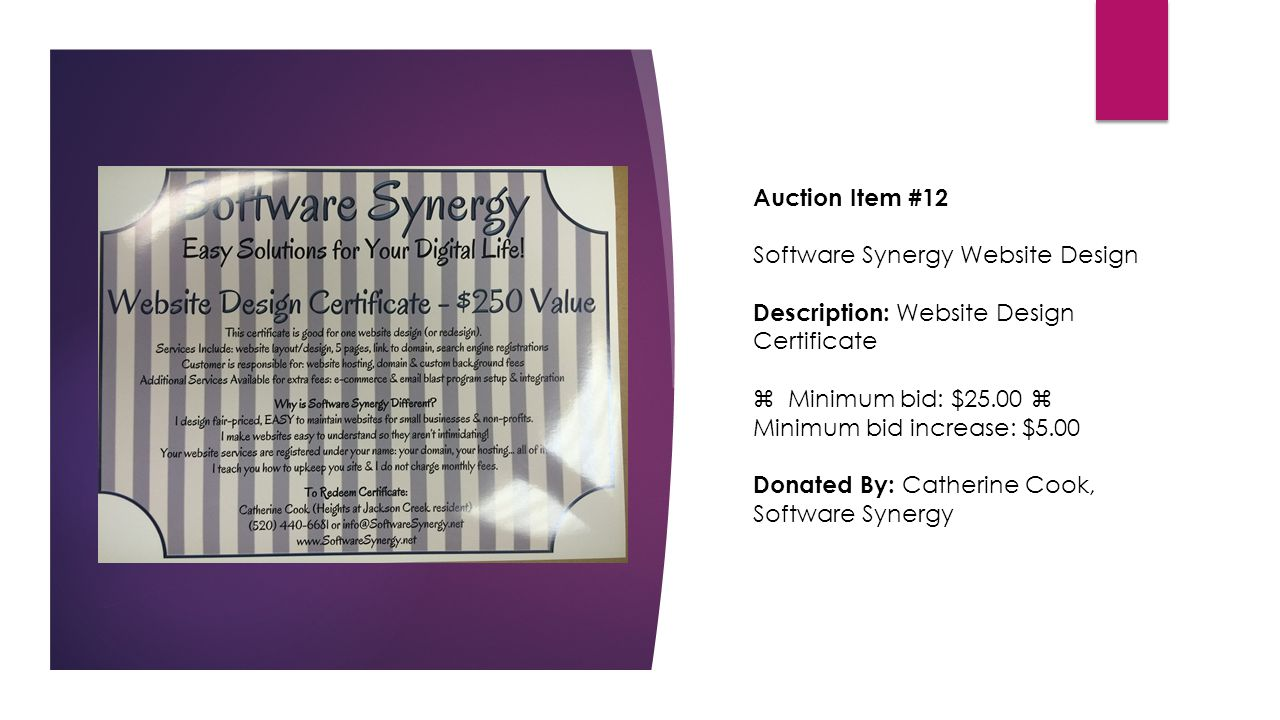 Auction Item #12 Software Synergy Website Design Description: Website Design Certificate  Minimum bid: $25.00  Minimum bid increase: $5.00 Donated By: Catherine Cook, Software Synergy