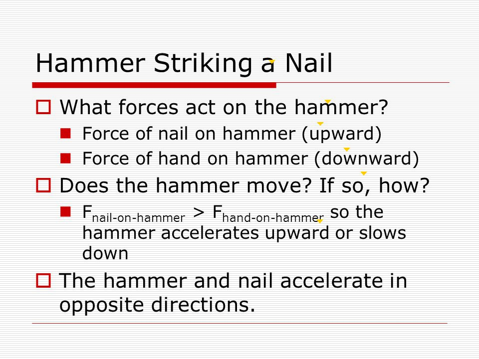 Hammer Striking a Nail  What forces act on the hammer.