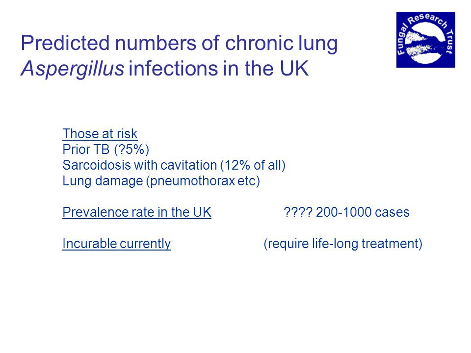 Predicted numbers of chronic lung Aspergillus infections in the UK Those at risk Prior TB (?5%) Sarcoidosis with cavitation (12% of all) Lung damage (pneumothorax etc) Prevalence rate in the UK ???.