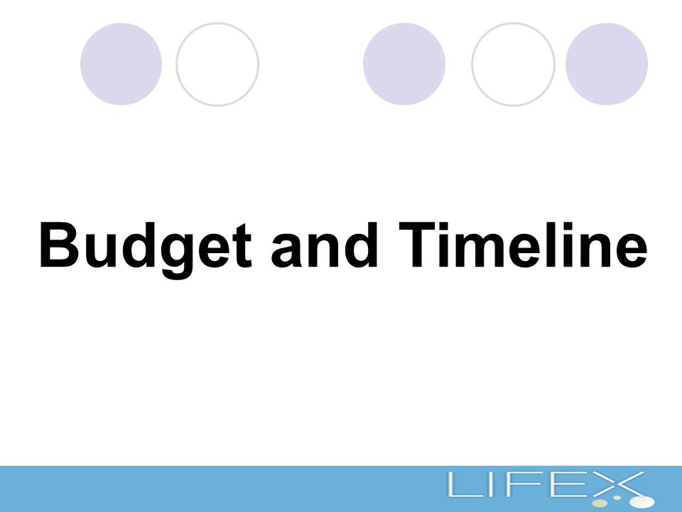 Budget and Timeline