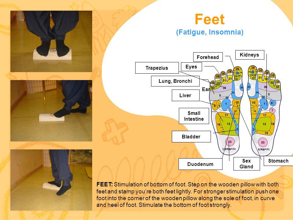 Feet (Fatigue, Insomnia) Sex Gland Small Intestine Kidneys Stomach Forehead Lung, Bronchi Eyes FEET: Stimulation of bottom of foot.
