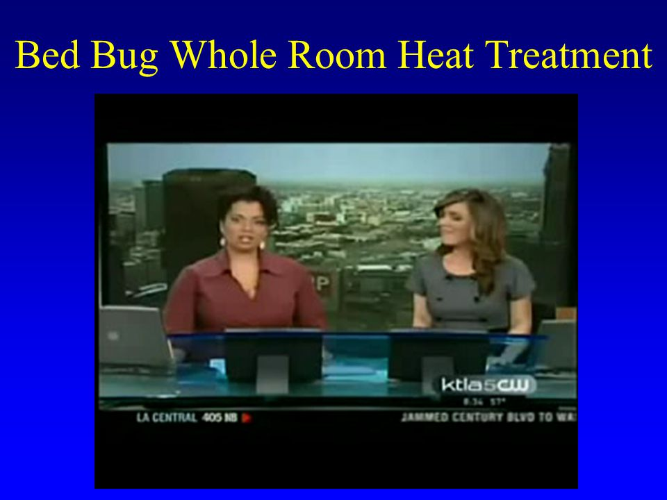 Bed Bug Whole Room Heat Treatment