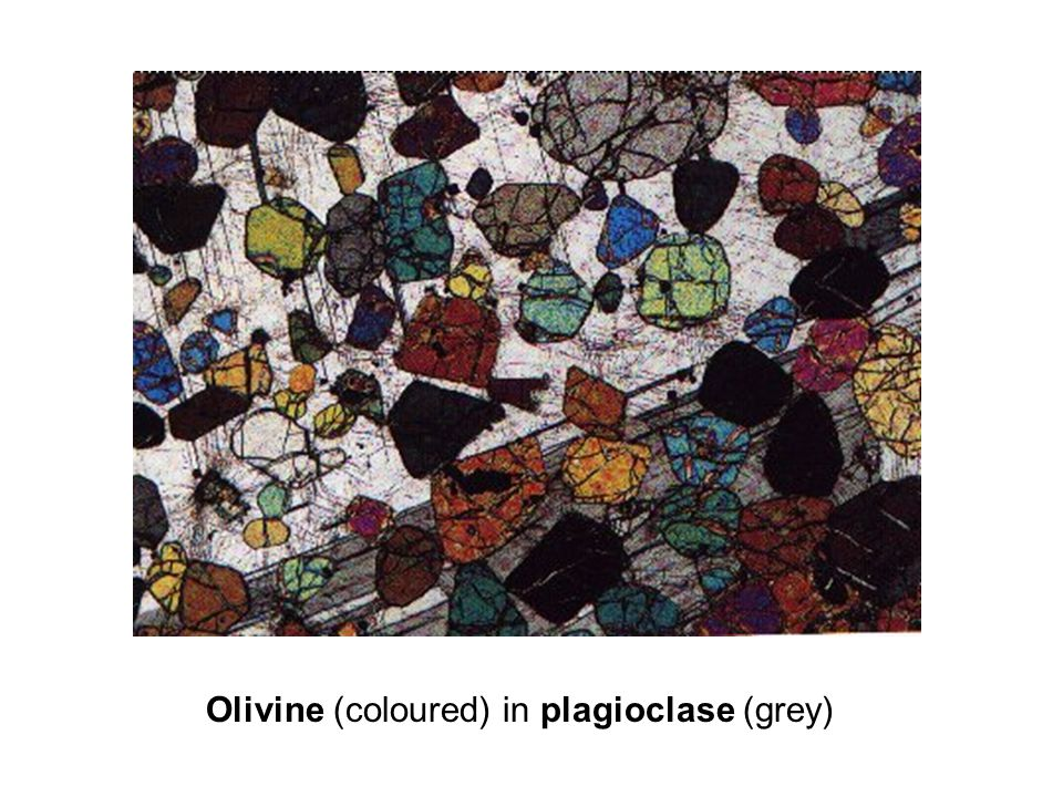 Olivine (coloured) in plagioclase (grey)