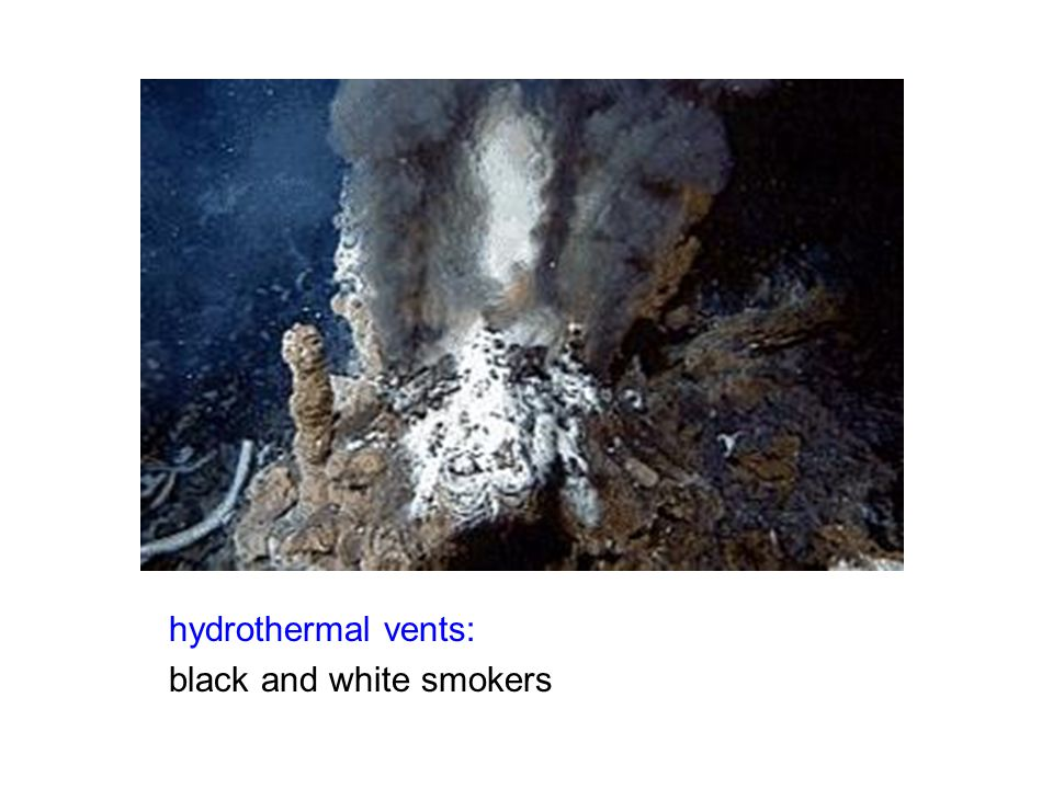 hydrothermal vents: black and white smokers