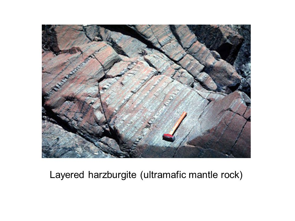 Layered harzburgite (ultramafic mantle rock)