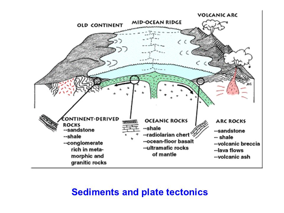 Sediments and plate tectonics