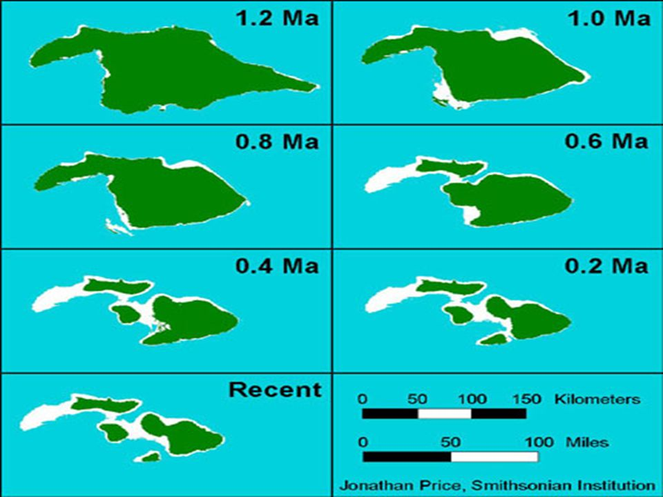 The Hawaiian Isles volcanoes undergo a progression of eruption styles and chemistries as they age, from pre-shield stage (e.g., Lo ihi), through the major shield-building stage (e.g., Kilauea), to post-shield (e.g., Haleakala) and rejuvenated stages (such as Diamond Head on Oahu when it erupted).
