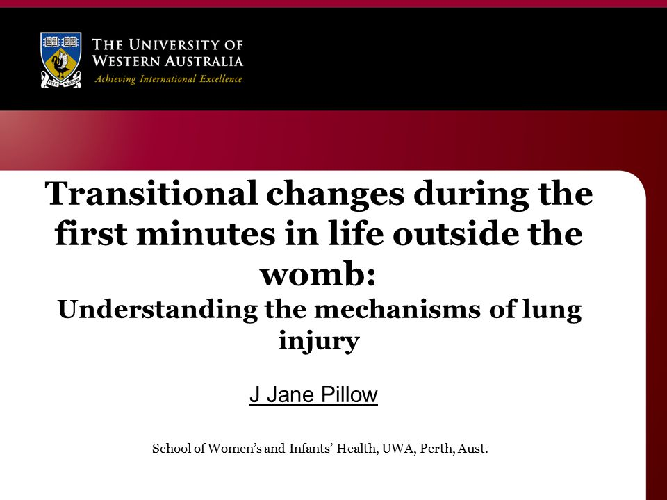 Transitional changes during the first minutes in life outside the womb: Understanding the mechanisms of lung injury J Jane Pillow School of Women's and Infants' Health, UWA, Perth, Aust.