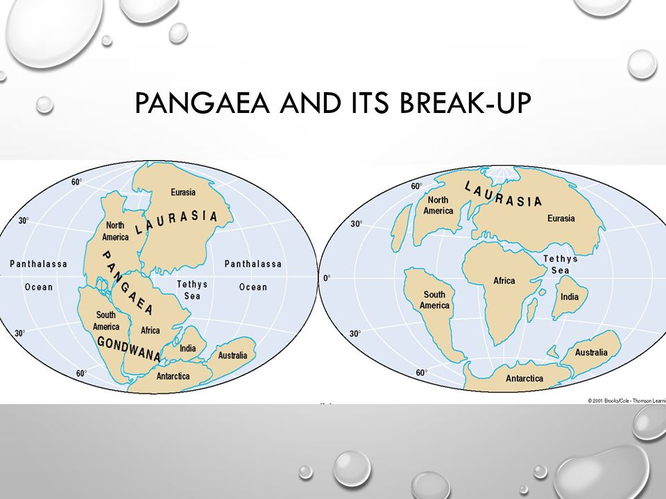 PANGAEA AND ITS BREAK-UP
