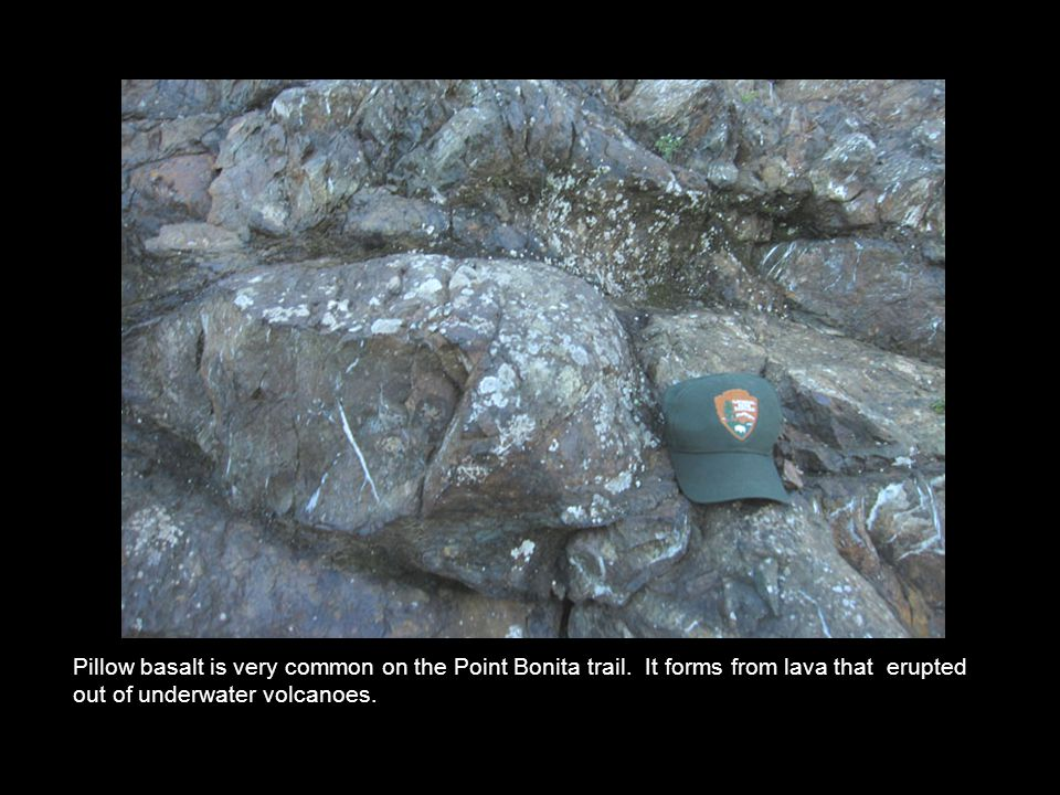 Pillow basalt is very common on the Point Bonita trail.