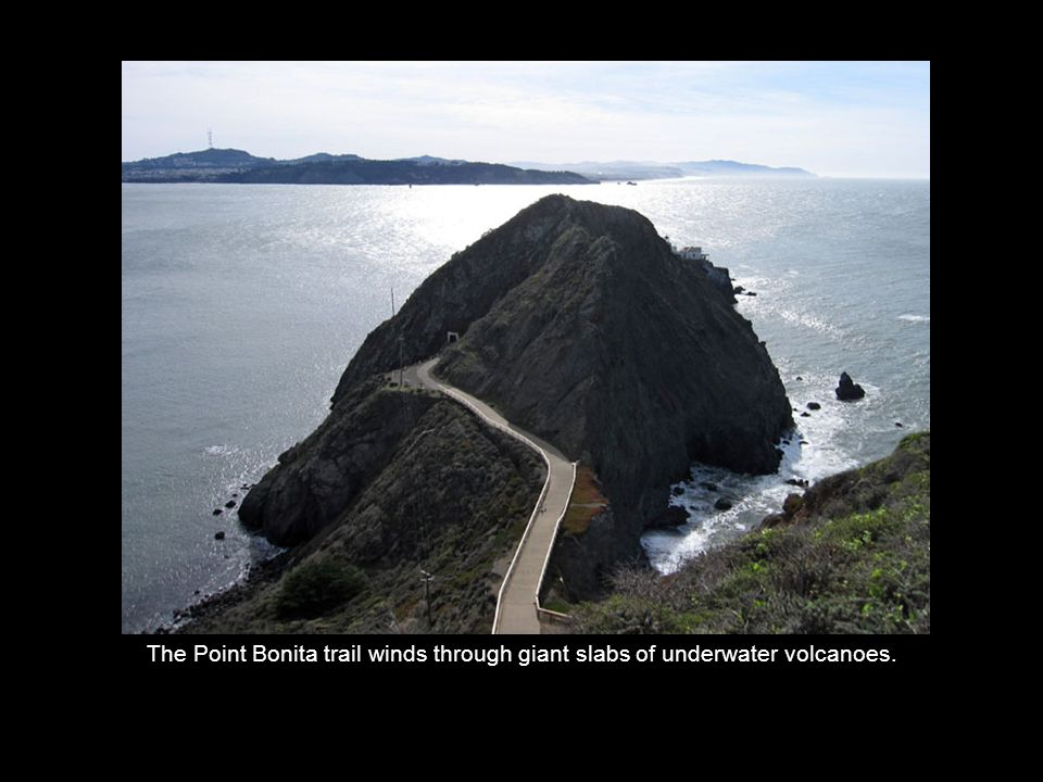 The Point Bonita trail winds through giant slabs of underwater volcanoes.