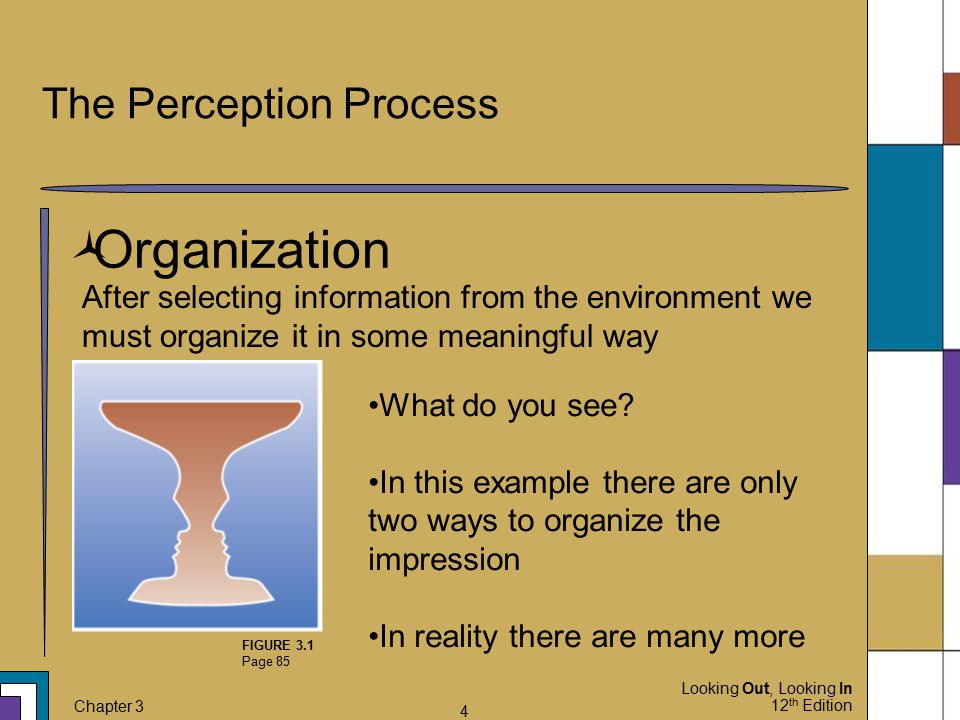 Looking Out, Looking In 12 th Edition Chapter 3 4 The Perception Process  Organization After selecting information from the environment we must organ