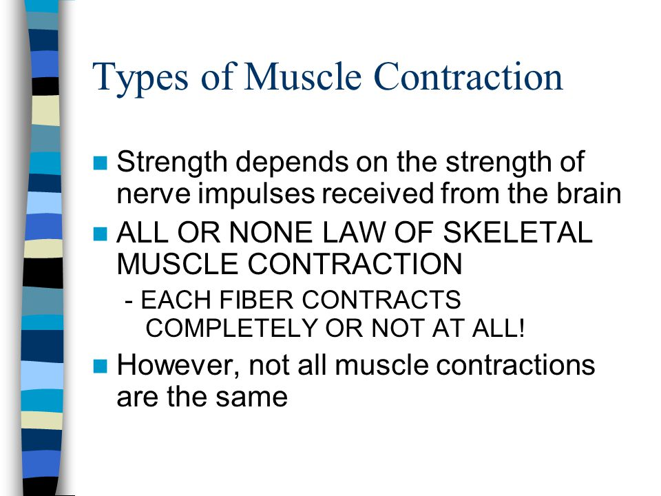 Types of Muscle Contraction Strength depends on the strength of nerve impulses received from the brain ALL OR NONE LAW OF SKELETAL MUSCLE CONTRACTION