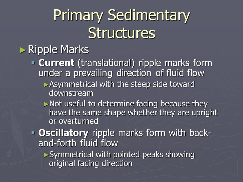 Primary Sedimentary Structures ► Ripple Marks  Current (translational) ripple marks form under a prevailing direction of fluid flow ► Asymmetrical with the steep side toward downstream ► Not useful to determine facing because they have the same shape whether they are upright or overturned  Oscillatory ripple marks form with back- and-forth fluid flow ► Symmetrical with pointed peaks showing original facing direction