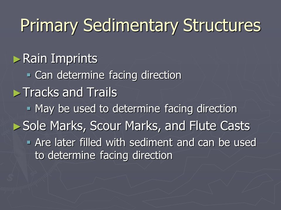 Primary Sedimentary Structures ► Rain Imprints  Can determine facing direction ► Tracks and Trails  May be used to determine facing direction ► Sole Marks, Scour Marks, and Flute Casts  Are later filled with sediment and can be used to determine facing direction